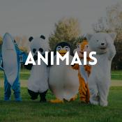 Catálogo de fatos animais para rapazes, raparigas, homens e mulheres