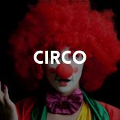Catálogo de fatos circo para rapazes, raparigas, homens e mulheres