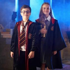 Os fatos Harry Potter originais