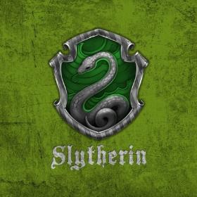 Merchandising Slytherin de Harry Potter