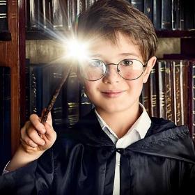 As Varinhas Harry Potter originais