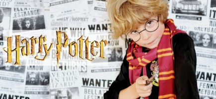 Fatos e acessórios oficiais Harry Potter